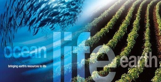 "2017: Simplot Australia's ""John West"" Tuna brand recognized by World Wildlife Fund Image"