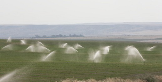 Savings from Smart Irrigation Wins Backing from BPA Image